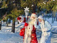 Новогодний квест - ночные тайны Сказочного леса. Волшебная вечерняя программа у Деда Мороза и Снегурочки, с катанием в санях и угощением (для школьников)