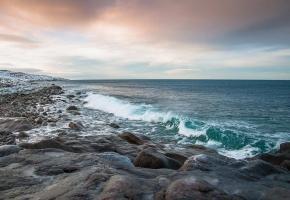 Фридайвинг на Баренцевом море (6 дней + авиа или ж/д)