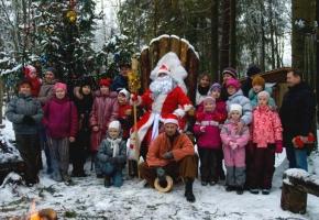 Новогодняя елка. Приключения на Волшебной ферме в Сказочном лесу (с подарками и угощением) (для школьников)