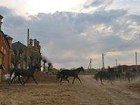 Повесть о земле Рязанской