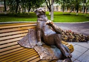 От Казанской губернии до стольных волжских градов (весна- лето, 5 дней + ж/д)