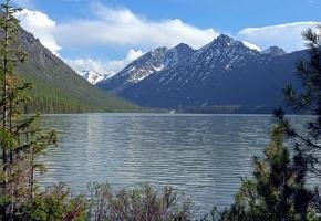 Мини-конно водный тур на Алтай (7 дней + авиа или ж/д)